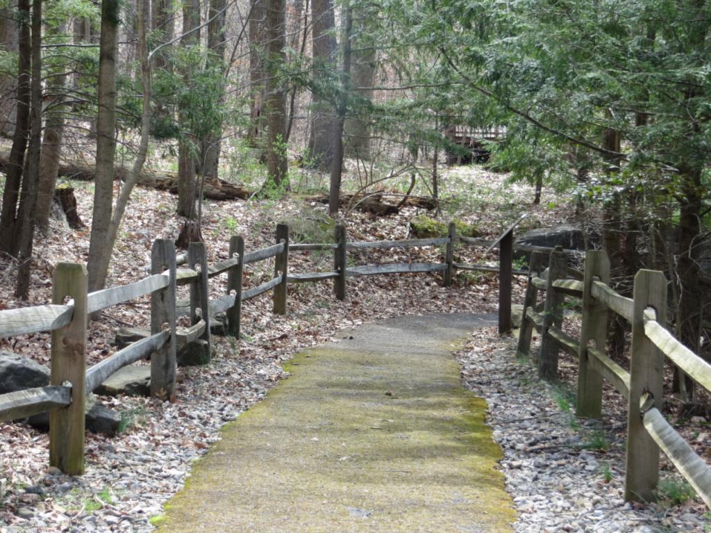 West Virginia State Wildlife Center by Vickie Mendenhall
